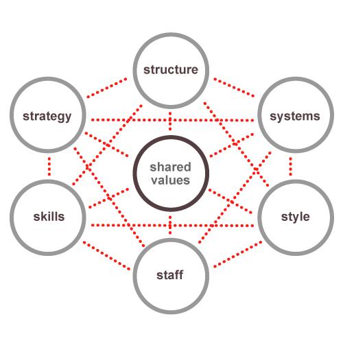 7 S Framework Software