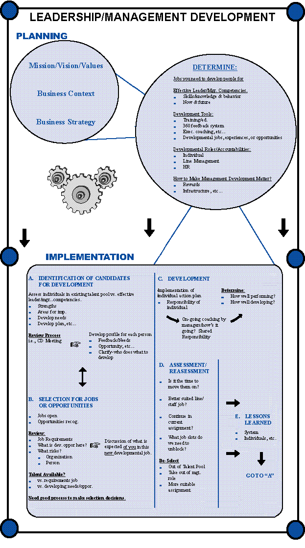 college of business development plan essay