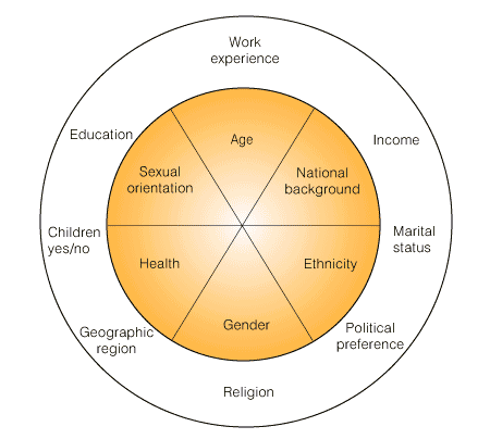 Diversity Dimensions Software