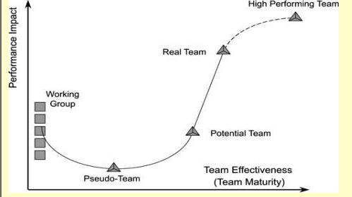 Katzenbach Team Performance Software