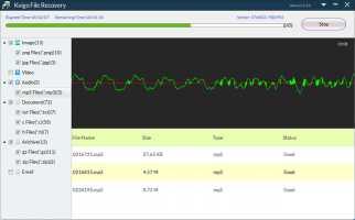 Kvigo File Recovery for Windows