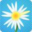 Multiplayer Daisy Petals