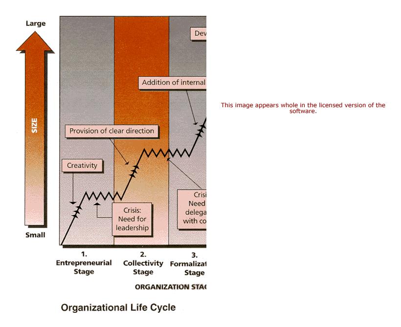 Organization Evolution Revolution