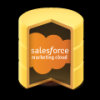 Salesforce Marketing Cloud (ExactTarget) ODBC Driver (32/64 bit)