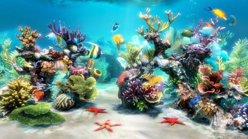 Sim Aquarium FREE!