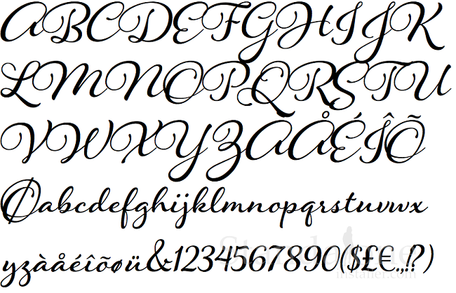 20 Best Calligraphy Fonts