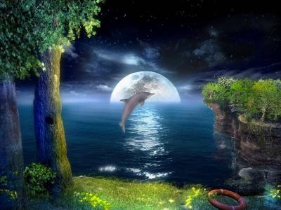 Download 3D Jumping Dolphins Screensaver
