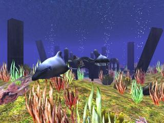 Download 3D Wild Dolphin Screensaver