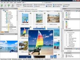 Download ACDSee Photo Manager 2009