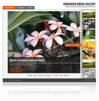 Download Advanced Image Gallery DW Extension