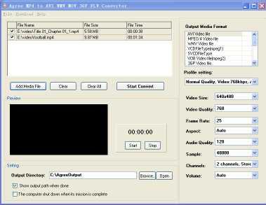 Agree MP4 to AVI WMV 3GP FLV Converter