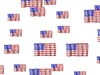 Download American Flag Screensaver