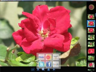 Download Aros Magic Viewer