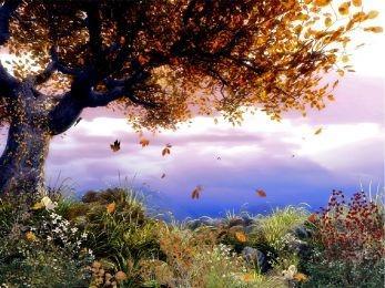 Download Autumn Tree