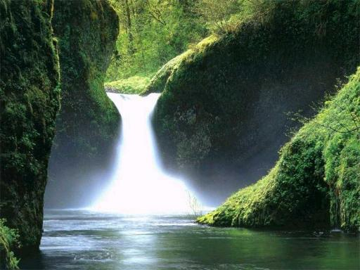 Download Beautiful Garden Waterfalls Screensaver