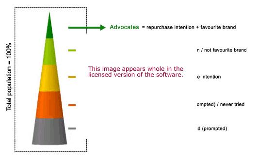 Brand Performance Software