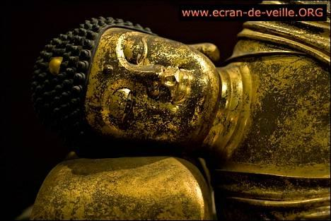 Download Buddhism Screensaver EV