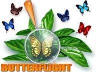 Download ButterFlight