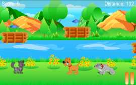 Cat and Dogs for Android