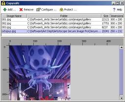 Download Copysafe Web Protection