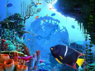 Download Coral Clock 3D Screensaver