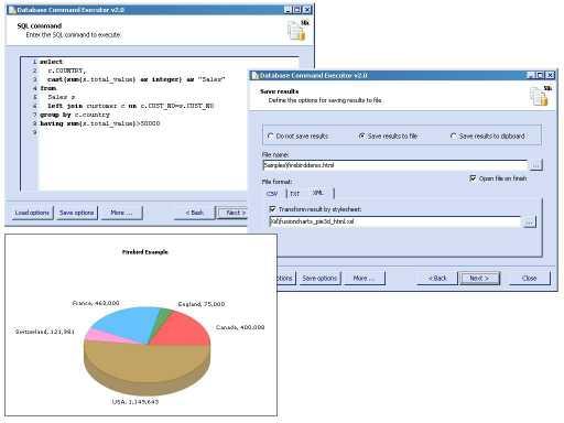 Database Command Executor