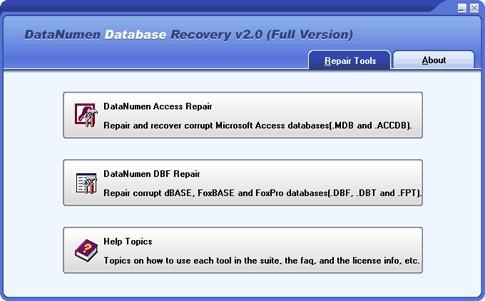 Download DataNumen Database Recovery