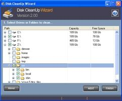 Download Disk CleanUp Wizard