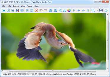 Easy Photo Studio FREE for Windows