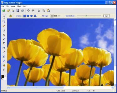 Download Easy Screen Ripper