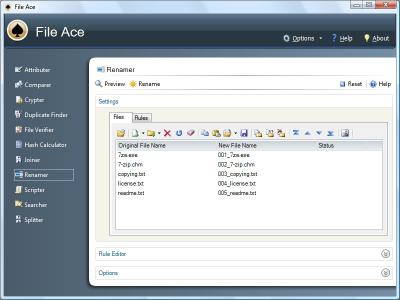 Download File Ace