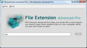 Download File Extension Advanced Pro