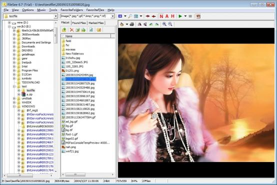Download FileSee