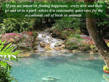 Download Find Happiness 15
