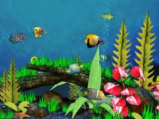 Download Fish Aquarium 3D Screensaver