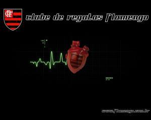 Download Flamengo Soccer Club Screensaver