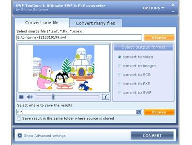 Download Flash to Video Converter