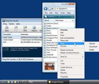Download Fling Free FTP Uploader Software