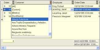 Download FlyGrid.Net