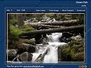 Download Forest Waterfall
