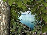 Download Forest World 3D Screensaver