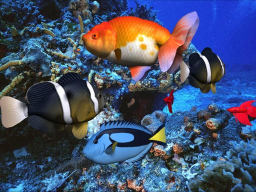 Download free 3D Aqua Screensaver