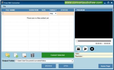 Download Free MKV Converter