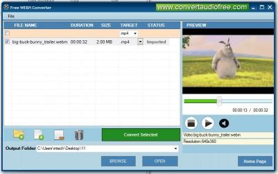 Download Free WebM Converter