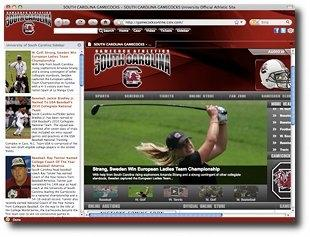 Download Gamecocks Firefox Browser Theme