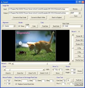 Download GOGO Picture Viewer ActiveX Control