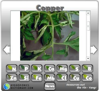 Download hydroponic nutrients