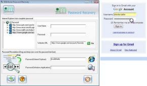 Download IE Password Restoration Software