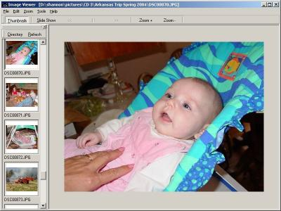 Download Image Viewer