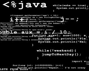 Download Java Programmers Brain